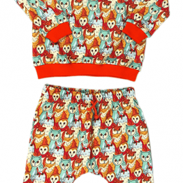 owls meeting set of sweatshirt and harem pants